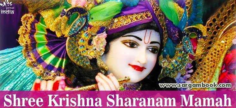 Shree Krishna Sharanam Mamah (Hemant Chauhan)